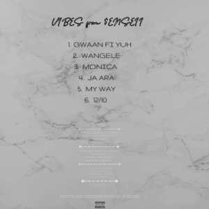 EP: Senseii – Vibes From Senseii
