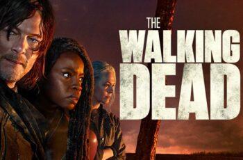 Series: The Walking Dead: Season 10, Episode 21